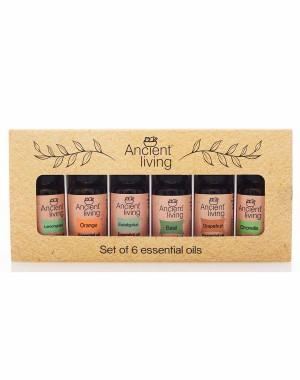Ancient Living Essential Oils Set AL110 (Set Of 6)