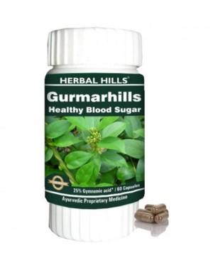 Gurmarhills HHS93 (120 Capsule)