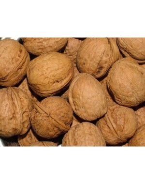 Leeve Dry Fruits Walnut LD149