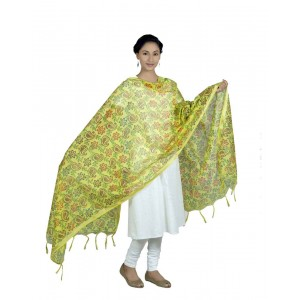 Printed Fancy Dupatta  BB07