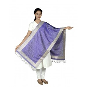 Silk Zari Weaved Boarder Scarf  BB11