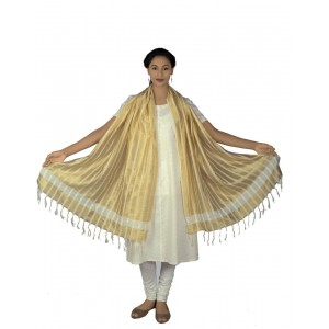 Golden white Dupatta BB16