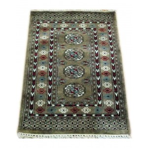 Cloud Gray Ersari Dali Kashmiri Carpet KCE19