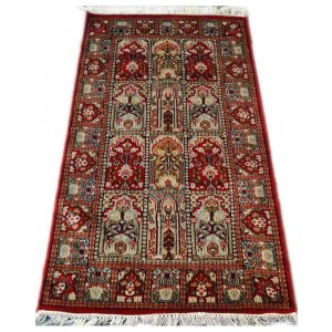 Multi-Color Hamadan Kashmiri Carpet KCE27